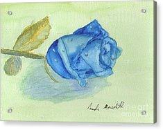 Blue Rose Acrylic Print by Pamela  Meredith
