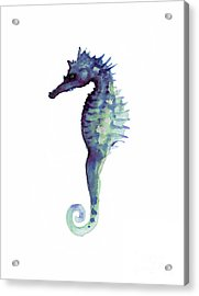 Blue Seahorse Acrylic Print by Joanna Szmerdt