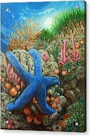 Blue Seastar Acrylic Print