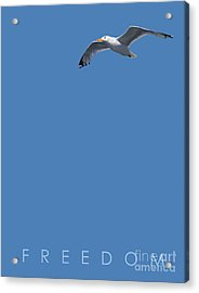 Blue Series 001 Freedom Acrylic Print