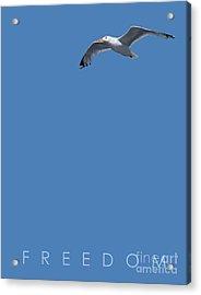 Blue Series 001 Freedom Acrylic Print by Rob Snow