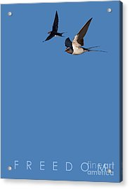 Acrylic Print featuring the drawing Blue Series 002 Freedom by Rob Snow