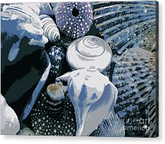 Blue Shells Acrylic Print by Janice Westerberg