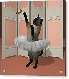 Blue Siamese Ballet Cat On Paw-te Acrylic Print by Andre Price