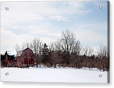 Acrylic Print featuring the photograph Blue Skies by Courtney Webster