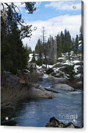 Acrylic Print featuring the photograph Blue Skies Of Winter by Bobbee Rickard