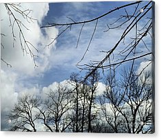 Acrylic Print featuring the photograph Blue Skies Of Winter by Robyn King