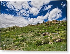 Blue Skies Acrylic Print by Tony Boyajian