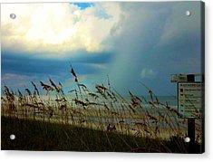 Blue Sky Above Acrylic Print