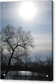 Blue Sky Acrylic Print