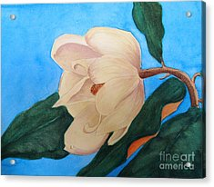 Acrylic Print featuring the painting Blue Sky Magnolia by Nancy Kane Chapman
