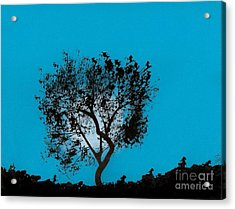 Acrylic Print featuring the drawing Blue Sky Moon by D Hackett