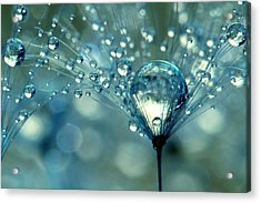 Blue Sparkles Acrylic Print by Sharon Johnstone
