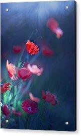 Blue Summer II Acrylic Print by Magda  Bognar