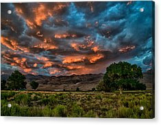 Blue Sunset Acrylic Print by Cat Connor