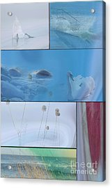 Acrylic Print featuring the photograph Blue Swan Collage by Randi Grace Nilsberg