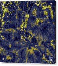 Blue Tango Floral Acrylic Print by Jean OKeeffe Macro Abundance Art