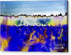 Blue Things Acrylic Print by Carol Lynch