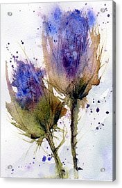 Blue Thistle Acrylic Print