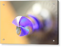 Blue Three Quarter Acrylic Print by David Andersen