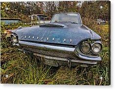 Blue Thunderbird Acrylic Print