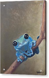 Blue Tree Frog On A Branch Acrylic Print