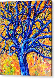 Blue Tree Acrylic Print