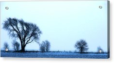 Blue Treeline Acrylic Print