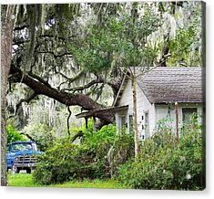 Blue Truck And Moss Acrylic Print by Patricia Greer