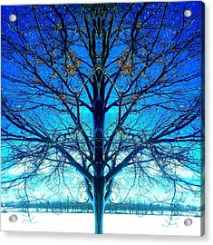 Blue Winter Tree Acrylic Print