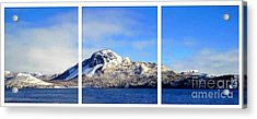 Blue Winter Triptych Acrylic Print by Barbara Griffin