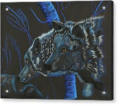 Blue Wolves Acrylic Print by Mayhem Mediums