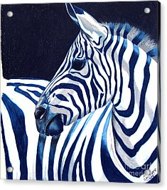 Acrylic Print featuring the painting Blue Zebra by Alison Caltrider