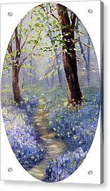 Bluebell Wood Acrylic Print by Meaghan Troup