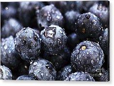Blueberry Close Up Acrylic Print by John Rizzuto