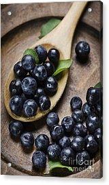 Blueberry Acrylic Print by Jelena Jovanovic