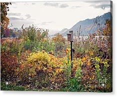 Bluebird House At East Lake Winona Acrylic Print