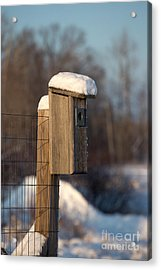 Bluebird House Covered With Snow Acrylic Print by Linda Freshwaters Arndt