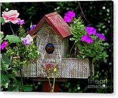 Bluebird House Acrylic Print