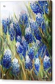 Bluebonnet Barrage  Acrylic Print