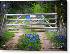 Bluebonnet Gate Acrylic Print by Inge Johnsson