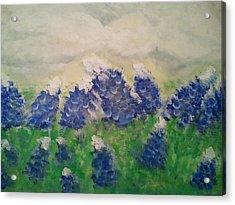 Bluebonnets Acrylic Print by Hollie Ward