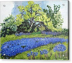 Bluebonnets On A Stormy Day Acrylic Print
