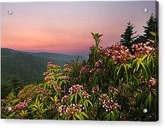 Blueridge Parkway Mountain Laurel Acrylic Print