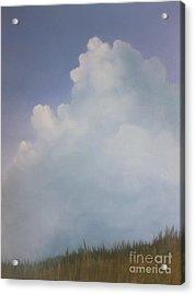 Blues Creek Acrylic Print by Cynthia Vaught