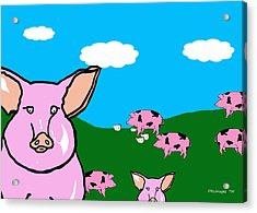 Bluesky Farm Pigs Acrylic Print