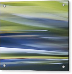 Blurscape Acrylic Print by Dayne Reast