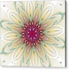 Blushing Colors Acrylic Print