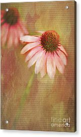 Acrylic Print featuring the painting Blushing by Linda Blair