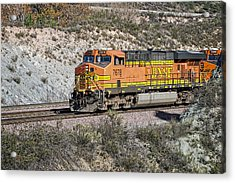 Acrylic Print featuring the photograph Bn 7678 by Jim Thompson